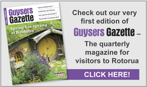 Guysers Gazette latest edition